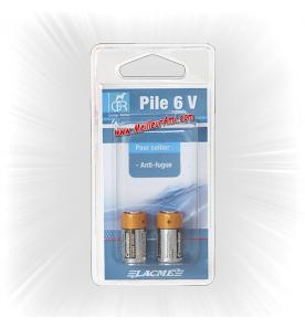 Blister 2 piles 6V