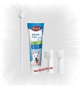 Set d'hygiène dentaire pour chien
