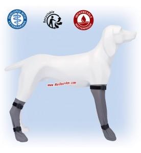Chaussettes de protection pour chien