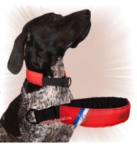 Collier chien personnalisable sur mesure rouge