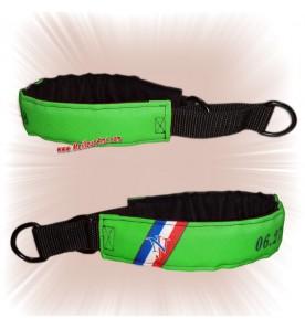 Collier chien sur mesure vert