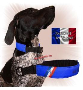 Collier chien personnalisable sur mesure bleu roi