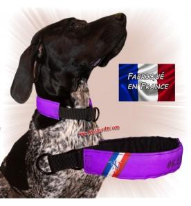 Collier chien personnalisable sur mesure violet
