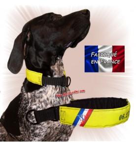 Collier chien personnalisable sur mesure jaune