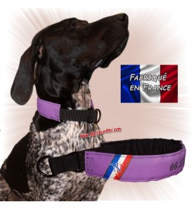 Collier chien personnalisable sur mesure parme