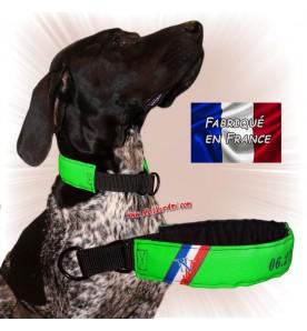 Collier chien personnalisable sur mesure vert