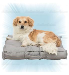 Matelas pour chien Felia