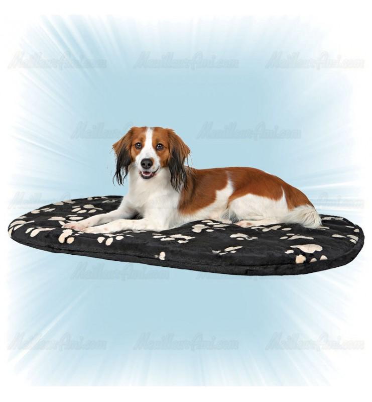 Tapis ovale pour chien