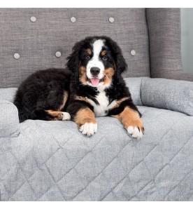 Protège siège pour chien