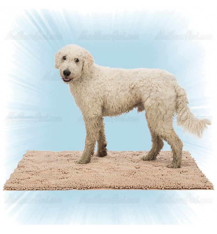Tapis pour chien absorbant