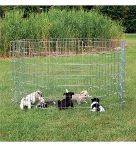 Enclos pour petits chiens