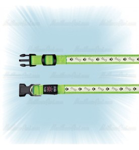 Collier lumineux chien rechargeable