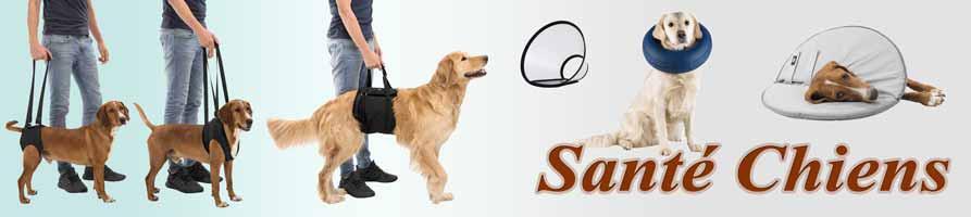 Santé chiens