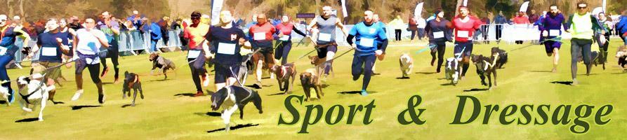 Sport et Dressage
