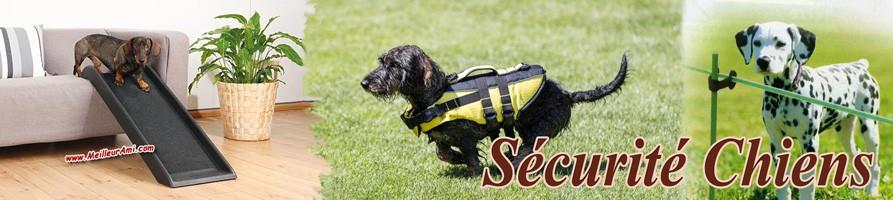 Sécurité chiens